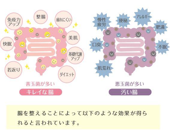 腸内フローラ改善によって得られる効果